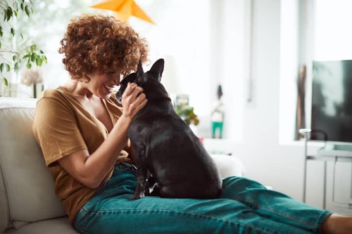 chica perro sofa
