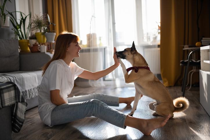 chica y perro haciendo un truco