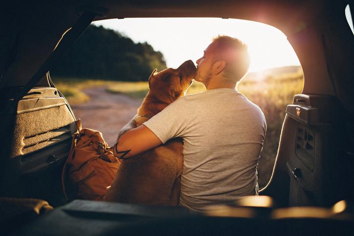 Hombre y perro de viaje